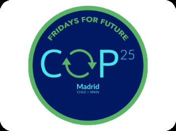 COP25, Cumbre social y 6D marcha por el clima